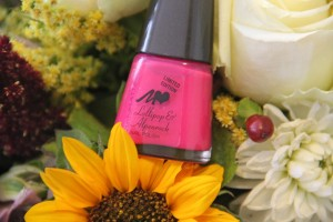 """Manhattan ♥ Lollipop & Alpenrock"" designt by Lola Paltinger"