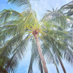 Maenam Beach Koh Samui