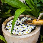 Thailand Koh Lanta Blumen