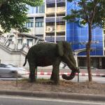 Bangkok Elefant