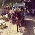 Pferdekutsche Gili Air