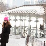 Central Park Winter Schnee