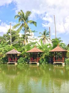 Warung DaDoni Bali
