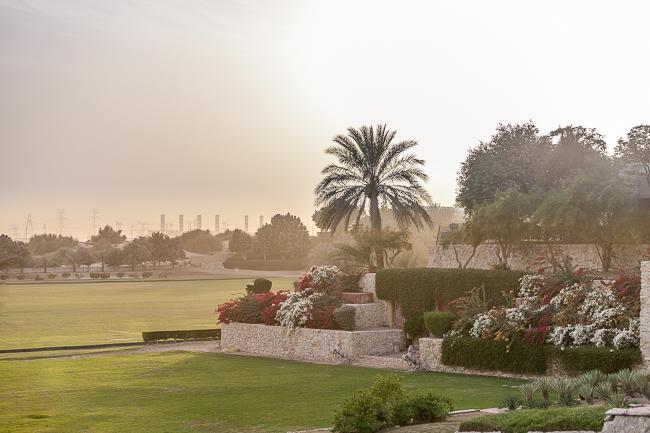 Dubai-6872