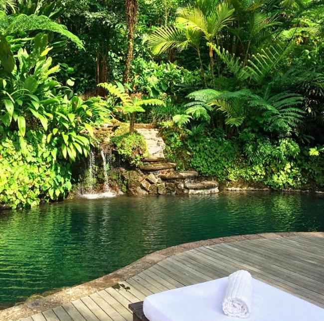 COMO Shambhala Spring Pool Jungle
