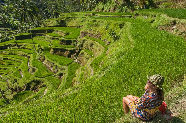 Bali Tegallalang