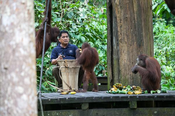 Tierische Begegnungen auf unserer Weltreise