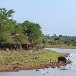 Safari Unterkünfte