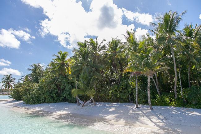 Malediven Niyama