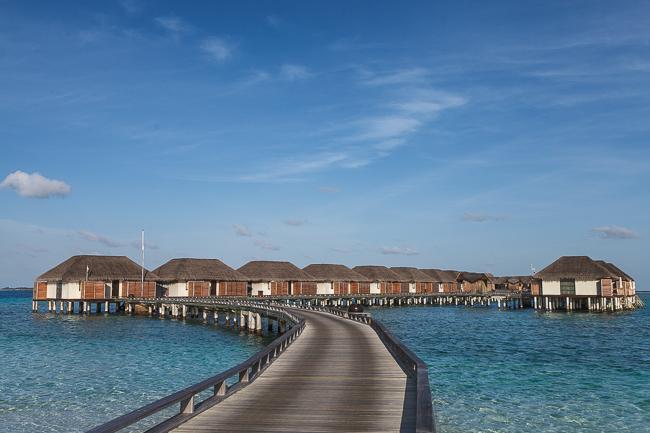 Liebste Grüße von den Malediven!
