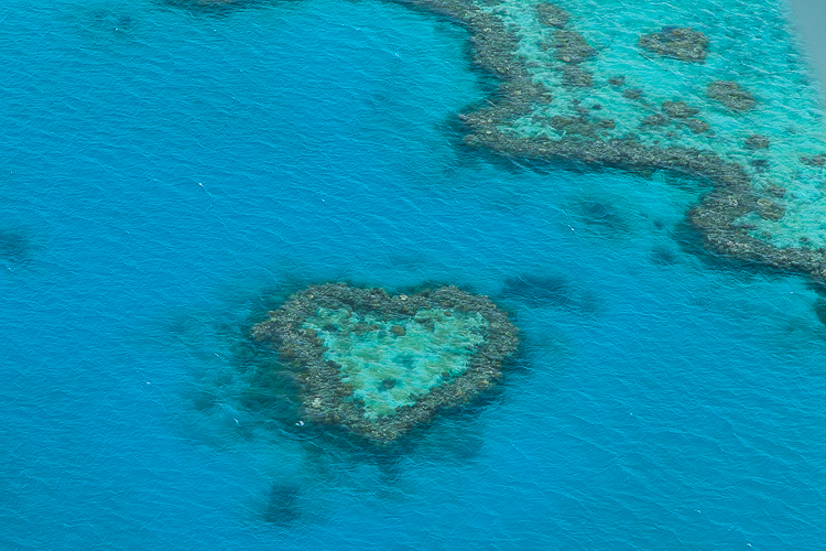 australien-great-barrier-reef-heart-reef-7889