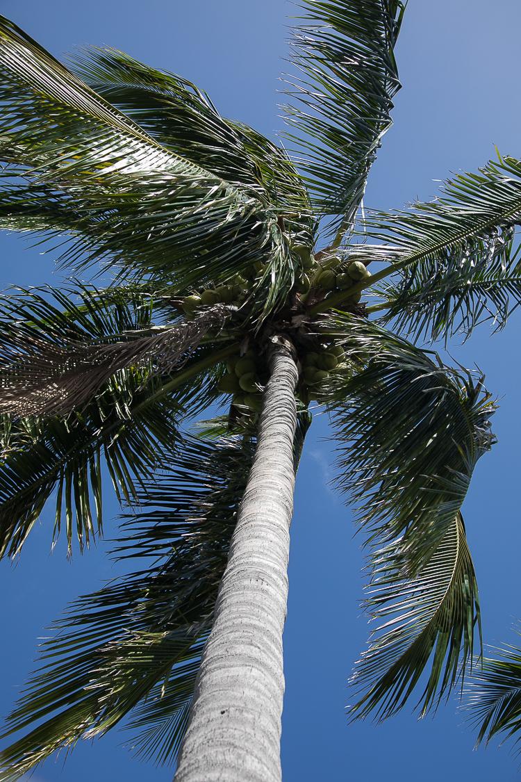 florida-miami-beach-dezember-wetter-blog