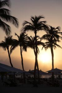 Aruba Eagle Beach Sonnenuntergang