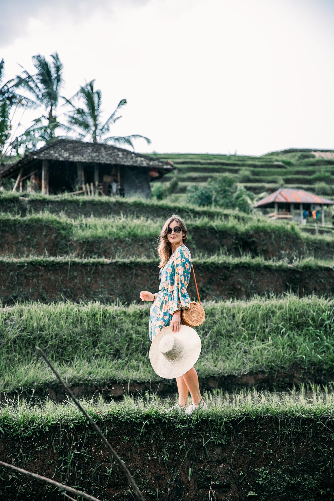 die schönsten Reisterrassen auf Bali