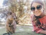 Quokka Selfie auf Rottnest Island