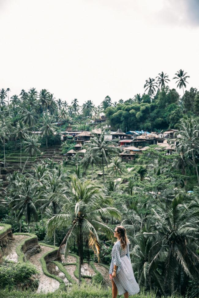 Reisterrassen Bali Januar 2018