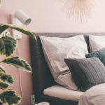Gummibaum im Schlafzimmer