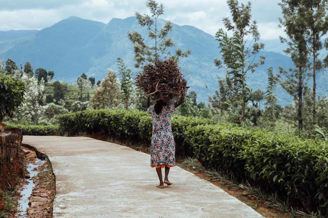 Sri Lanka Weltreise