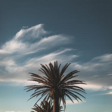 Sonnenuntergang Camps Bay